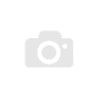 MICHELIN LATITUDE ALPIN LA2 255/55R20 110V